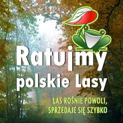 Ratujmy polskie lasy!